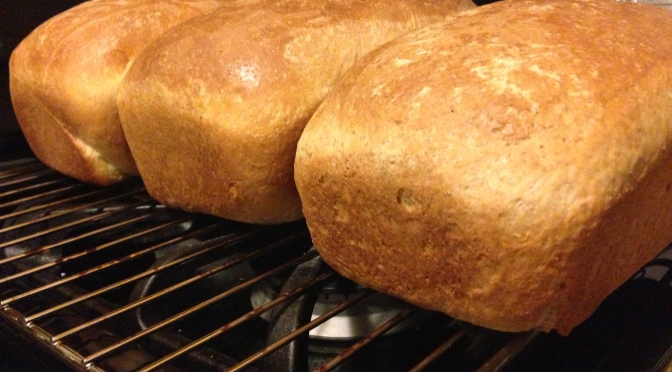 Baking Bread from Scratch