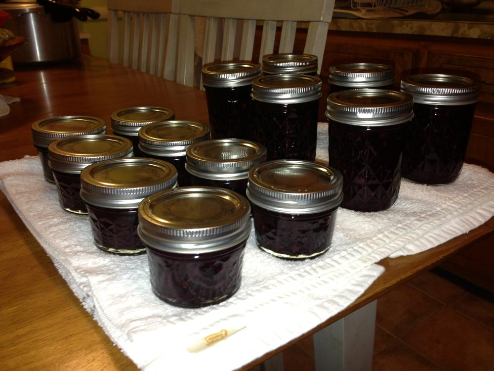Serviceberry Jam!!!
